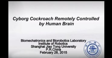Brain To Brain Interface To Remotely